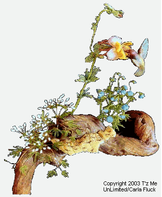 Columbine with Hummingbird and Mushroom